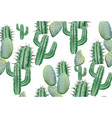 cactus pattern texture on white modern vector image vector image