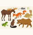 Cute animals for bawild moose and deer hare
