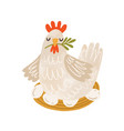 cute brood hen on nest with eggs domestic bird vector image
