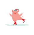 cute pig ice skating winter sport vector image vector image