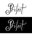 Hand drawn lettering perfect vector image vector image