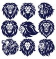 lion logo set collection design vector image vector image