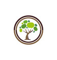 social tree abstract logo icon vector image vector image