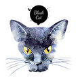 watercolor black cat painted isolated halloween vector image
