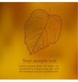 Abstract cute autumnal background vector image vector image