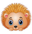 cute baby hedgehog isolated on a white background vector image