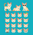 cute cat in different poses and emotions vector image vector image