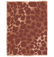 leopard pattern vector image vector image