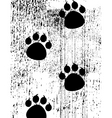 paw prints on grunge background vector image vector image