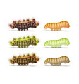set of caterpillars vector image vector image