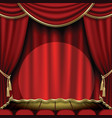 Show stage vector image vector image