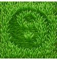Ying-Yang symbol on green grass vector image