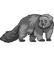 Bearcat animal cartoon vector image