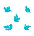 bird wing dove icon template vector image vector image