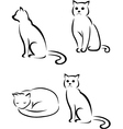 Cat tattoo collection