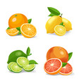 citrus fruits realistic icons citrus vector image