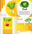 Infographic diagram with fresh vegetables vector image
