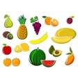 Juicy healthy fresh isolated fruits vector image vector image