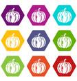 pumpkin icons set 9 vector image vector image