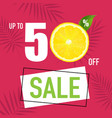 sale poster and slices of orange vector image vector image
