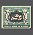 sea horse beach club retro poster vector image