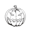 sketch pumpkin vector image