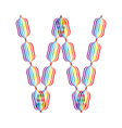Letter W made in rainbow colors vector image