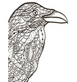 bird head raven coloring book for adults vector image vector image