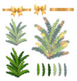 christmas fir tree isolated on white vector image vector image