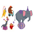 circus funny animals cheerful zoo vector image