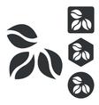 Coffee icon set monochrome vector image