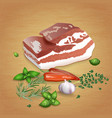 pork brisket with tasty sauces and spices vector image vector image