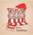 christmas hipster fashion animal frog vector image vector image