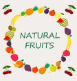 different kinds of fruits on a vector image vector image