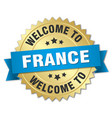 france 3d gold badge with blue ribbon vector image vector image