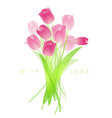 Fresh spring tulips vector image vector image