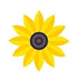yellow flower isolated vector image