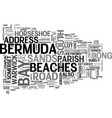 bermuda beaches text word cloud concept vector image vector image