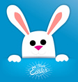 Easter background with a white bunny vector image vector image