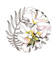hand drawing lily flowers on white background vector image vector image