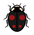 ladybug logo symbol icon sign with four red spots vector image