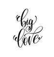 big love hand lettering romantic quote to vector image vector image