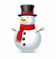 christmas snowman with hat and scarf vector image vector image