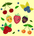 fruit sticker collection vector image vector image