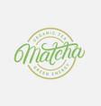 matcha hand written lettering logo vector image