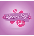 Mothers Day sale banner vector image