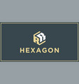 rr hexagon logo design inspiration vector image vector image