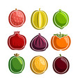 set colorful fruits icons vector image vector image