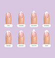 set of simple realistic natural manicured nails vector image