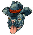 a dog in a cowboy hat vector image